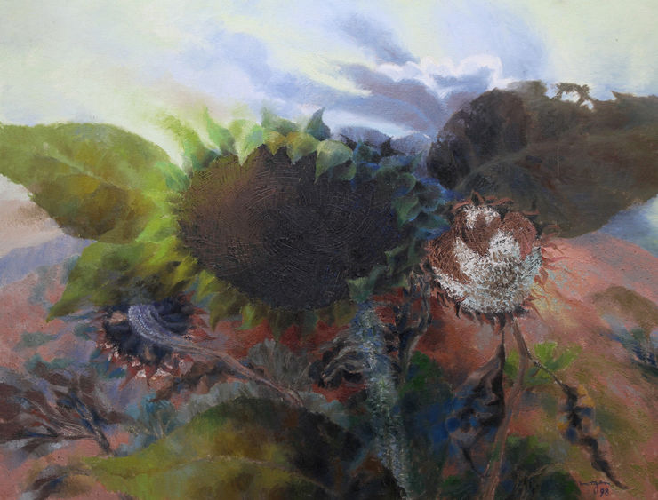 Sunflower Heads in a Landscape by Benton End artist Glyn Morgan at Richard Taylor Fine Art