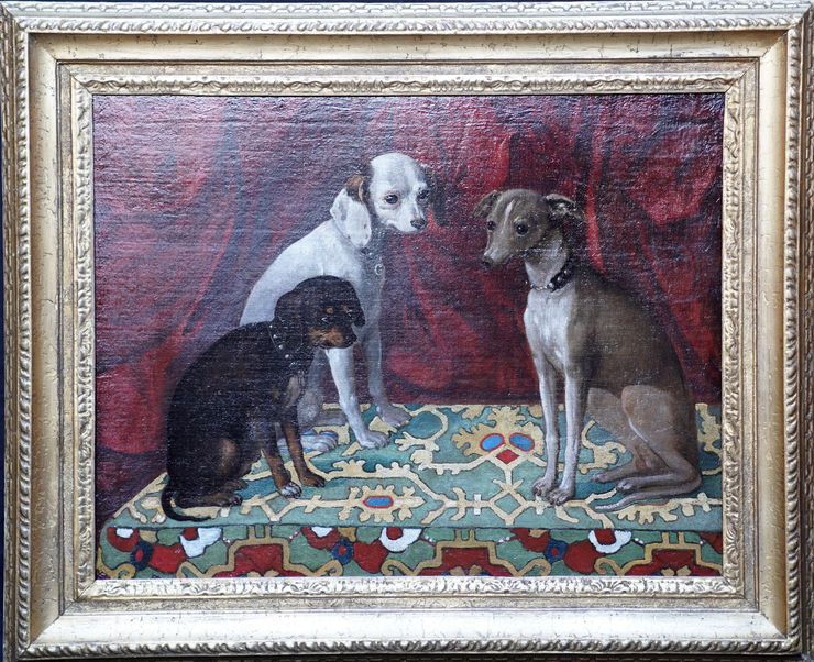 Italian Old Master Dogs by Francesco Fieravino at Richard Taylor Fine Art