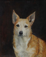 Portrait of a Welsh Corgi Dog by Florence Mabel Hollams Richard Taylor Fine Art