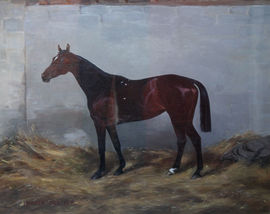Honeys Race Horse Portrait by Imogen Mary Collier Richard Taylor Fine Art