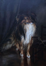 Collie Dog Portrait by Kathleen Olander Richard Taylor Fine Art