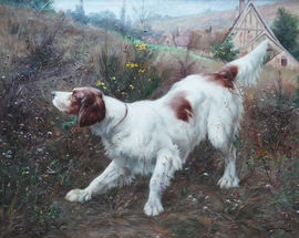 Victor Marcou - Dog portrait  - Richard Taylor Fine Art